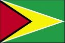 Modern Flag of Guyana